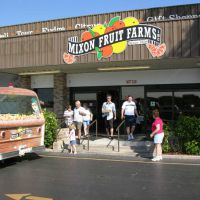 mixon fruit farms | elite family care