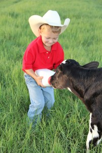 Dakin-Dairy-Farms- | elite family care