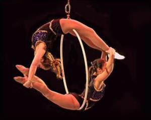 sailor Circus   elite family care