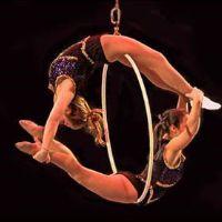 sailor Circus | elite family care